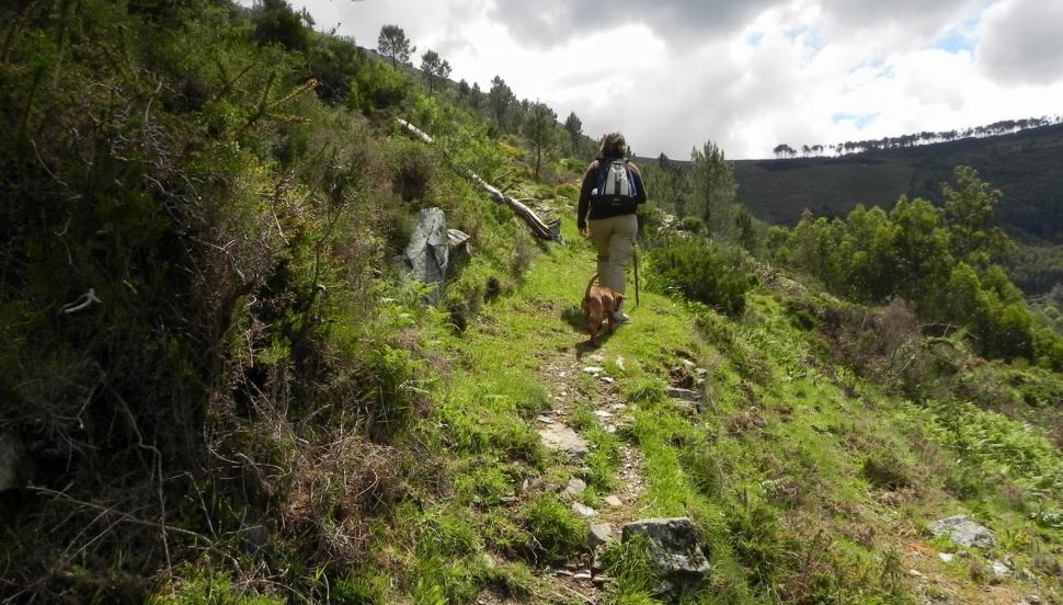 CAMINHO DO XISTO DE GÓIS Percurso circular que une as quatro Aldeias do Xisto de Góis: Aigra Nova, Aigra Velha, Pena e Comareira. Situa-se dentro da Rede Natura 2000 – Sítio da Serra da Lousã.
